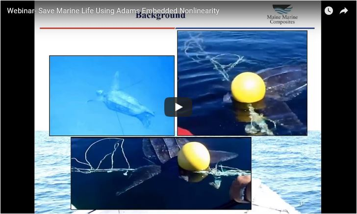 ¡Ya está disponible el webinar Save Marine Life: Simulate Entanglement of Leatherback Sea Turtles using Adams Embedded Nonlinearity! (Idioma: Inglés)